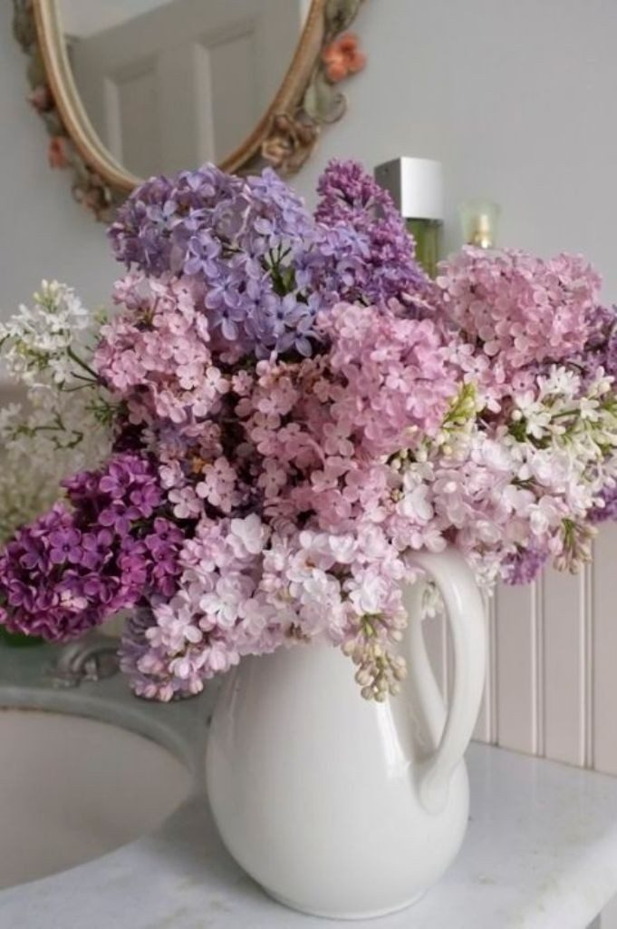 feed-flowers-2 7 Tricks to Make Flowers Last forever ...