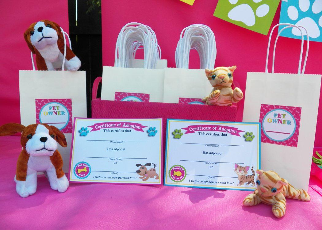 adoption-certificates1 4 Most Creative Beanie Boo Birthday Party Ideas