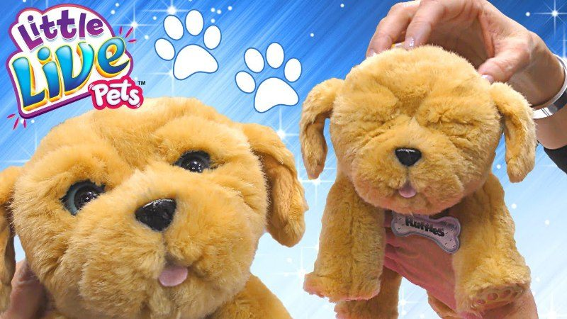 Snuggles-My-Dream-Puppy-toy 20+ Must Have Christmas Toys for Children in 2020