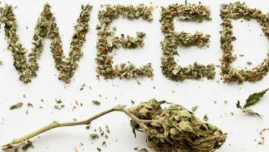 Photo of 4 Hilarious Myths, why 420 Weed Day is Named So?!