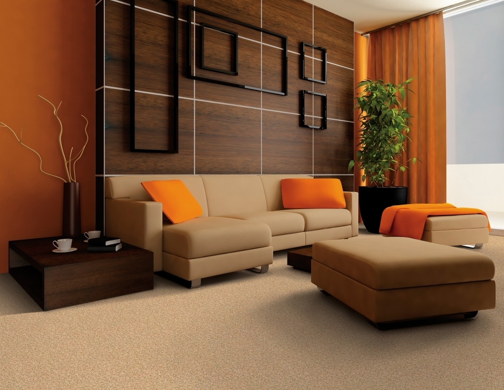 Painted-Walls-1 20+ Best Living Room Design Ideas in 2020