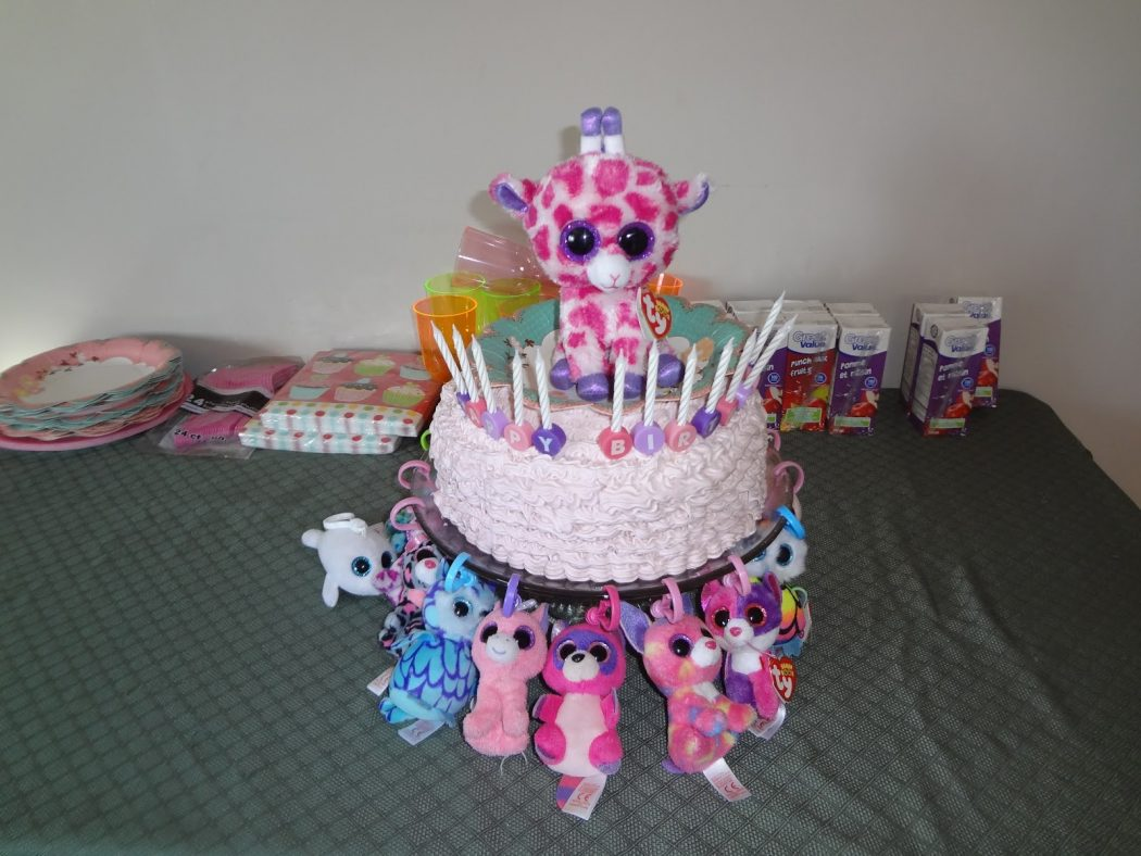 DSC02207 4 Most Creative Beanie Boo Birthday Party Ideas