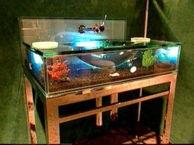 aquarium-bathroom-sink2-675x506 Top 10 Modern Bathroom Sink Design Ideas