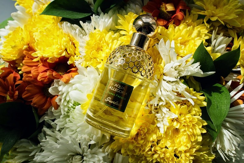 Aqua-Allegoria-Herba-Fresca-Guerlain-for-women-and-men 11 Tips on Mixing Antique and Modern Décor Styles