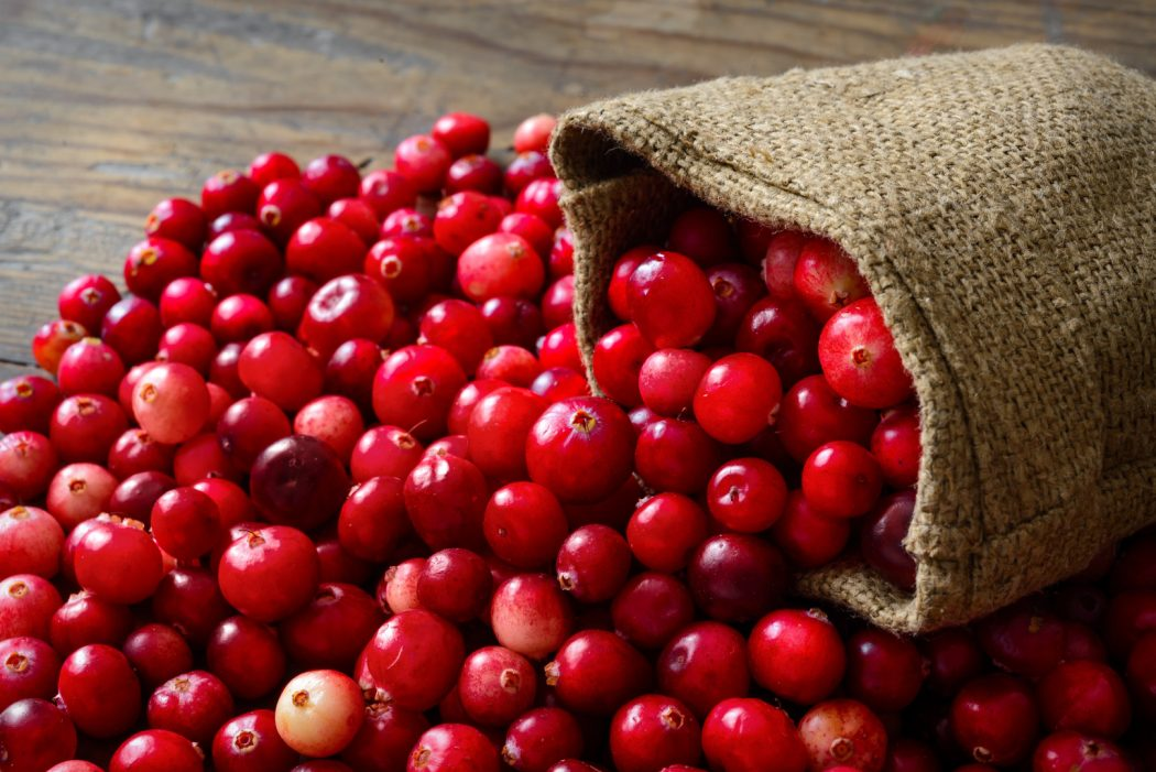 Cranberry1 6 Main Healing Products That Are Effective