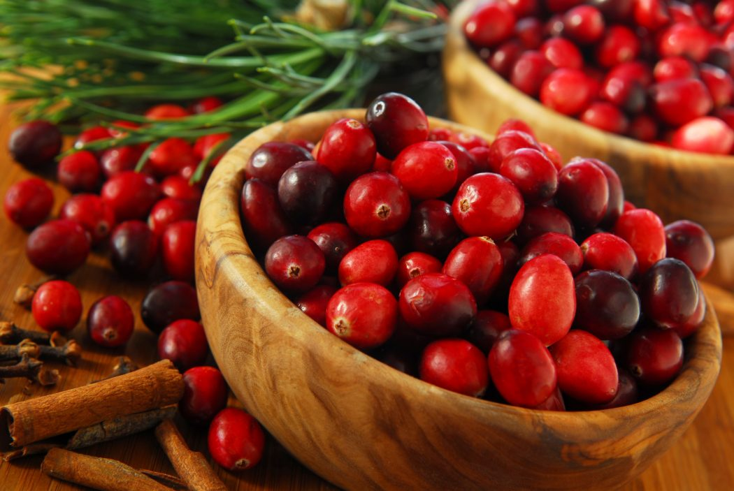 Cranberry2 6 Main Healing Products That Are Effective