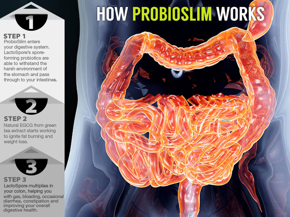 Does-ProbioSlim-Work ProbioSlim; Does it Work?