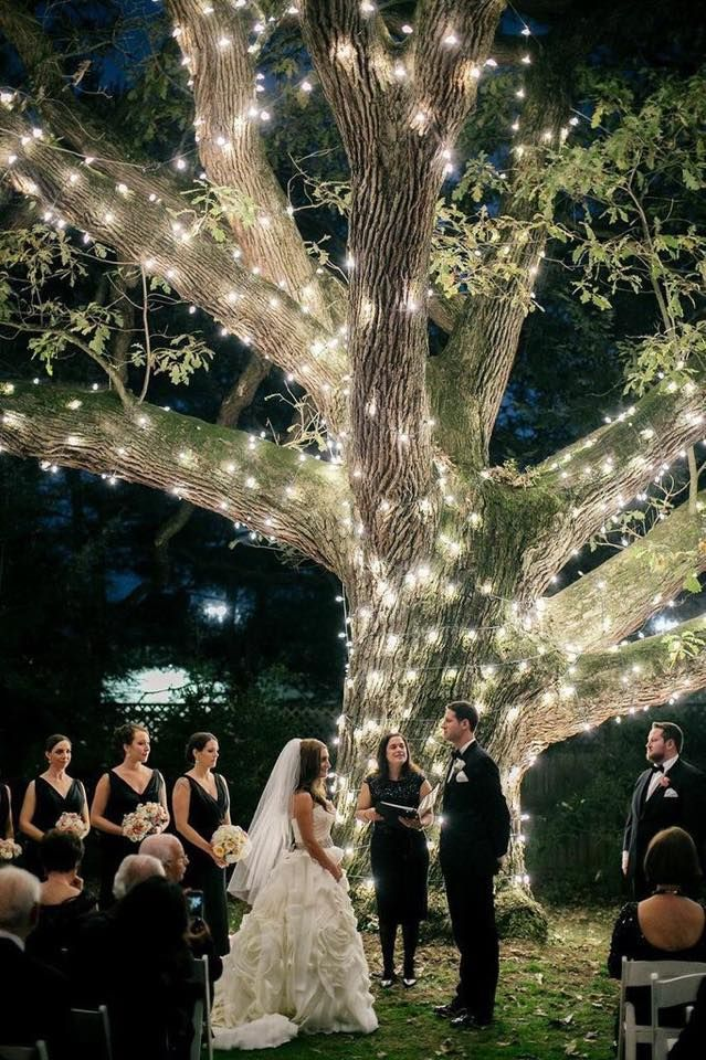 Illuminating-Trees1 10 Best Outdoor Wedding Ideas in 2018