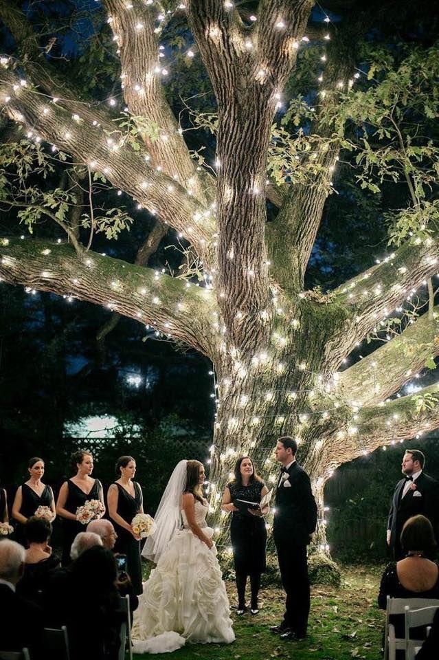 Illuminating-Trees1 10 Best Outdoor Wedding Ideas in 2017