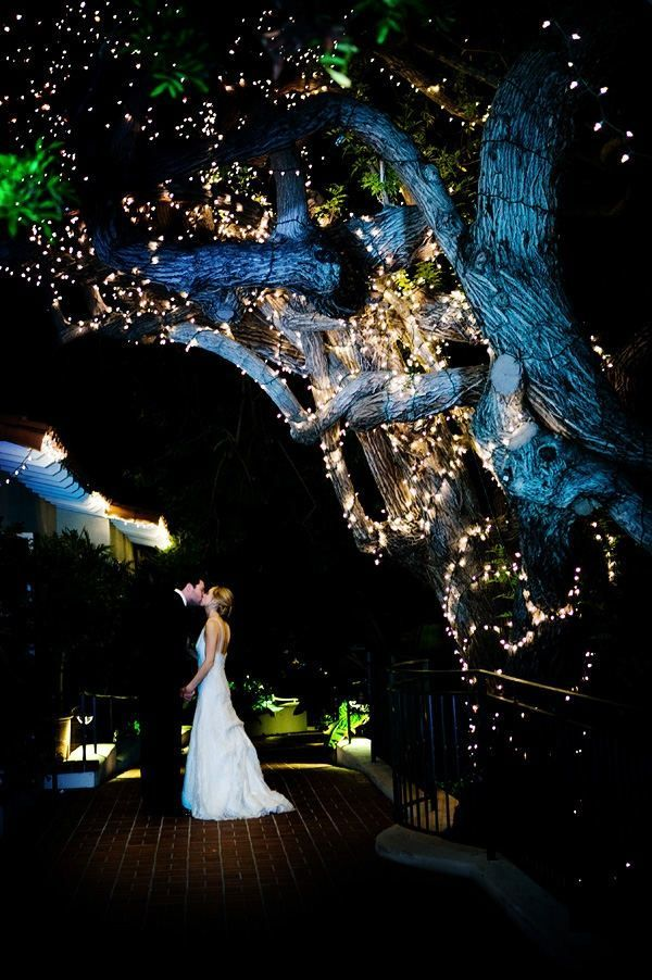Illuminating-Trees4 10 Best Outdoor Wedding Ideas in 2018