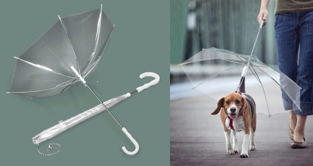 Pets-Umbrella2 15 Unusual Umbrellas Design Trends in 2018