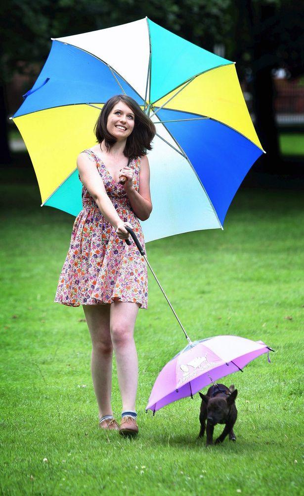 Pets-Umbrella3 15 Unusual Umbrellas Design Trends in 2017