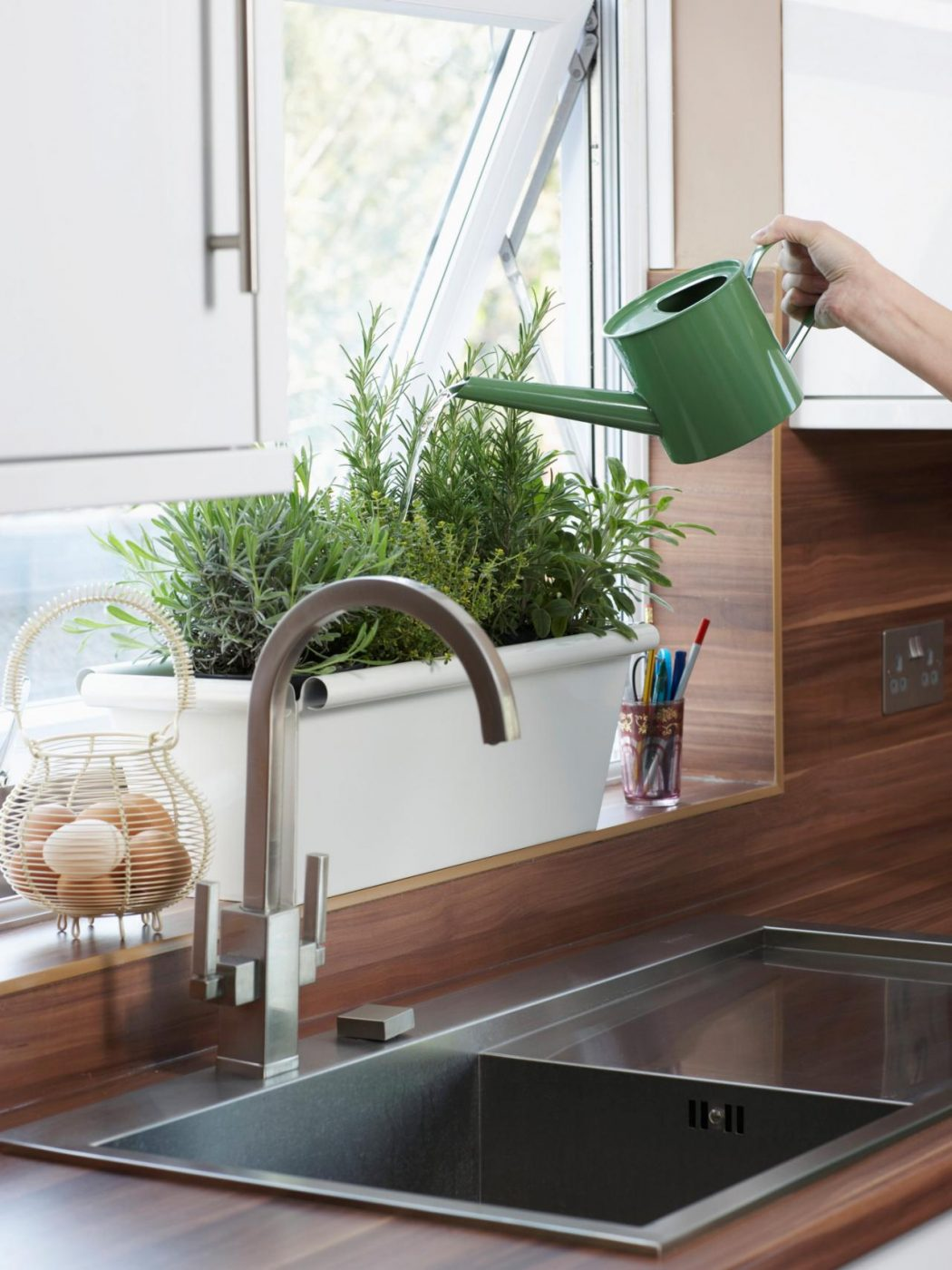 fresh-plants2 5 Newest Kitchens' Decorations Ideas For 2018