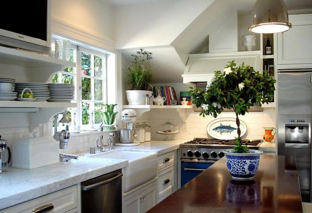 fresh-plants4 5 Newest Kitchens' Decorations Ideas For 2018