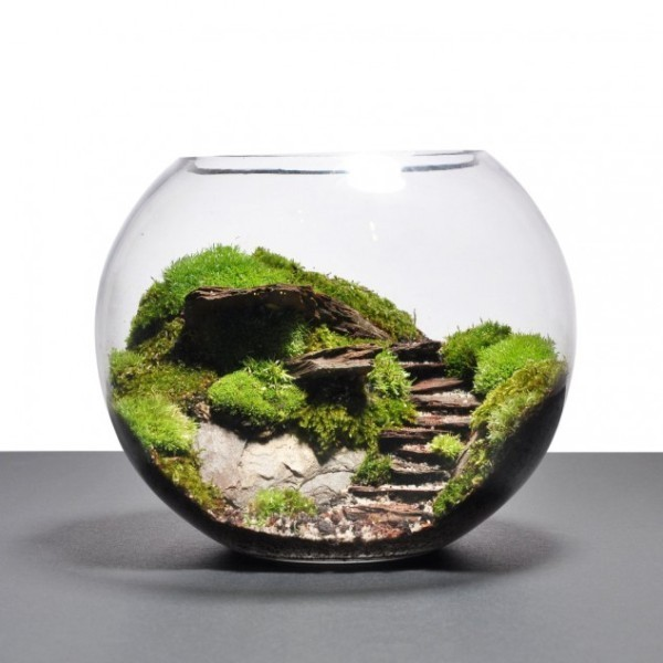 terrarium-2 15 Newest Home Decoration Trends You Have to Know for 2018