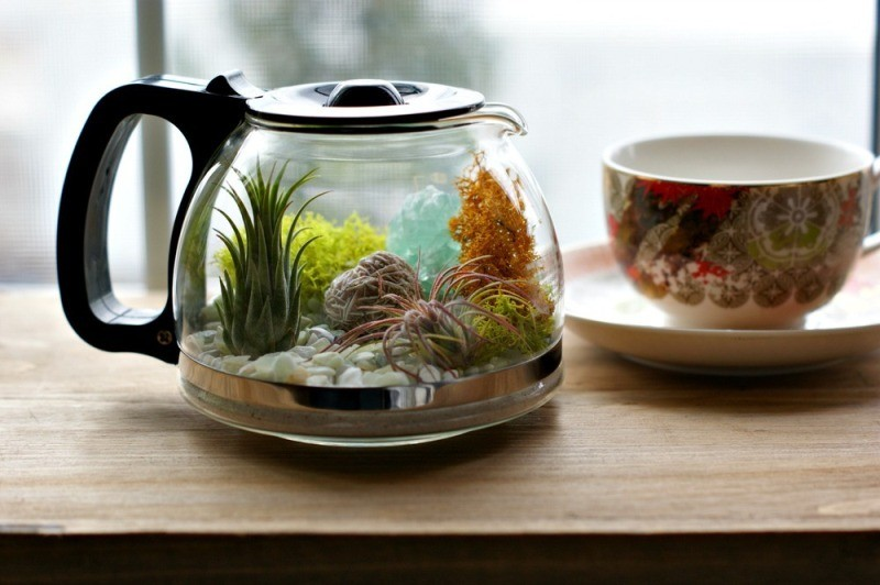terrarium-3 15 Newest Home Decoration Trends You Have to Know for 2018