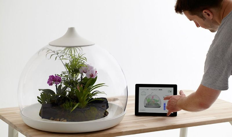 terrarium-4 15 Newest Home Decoration Trends You Have to Know for 2017