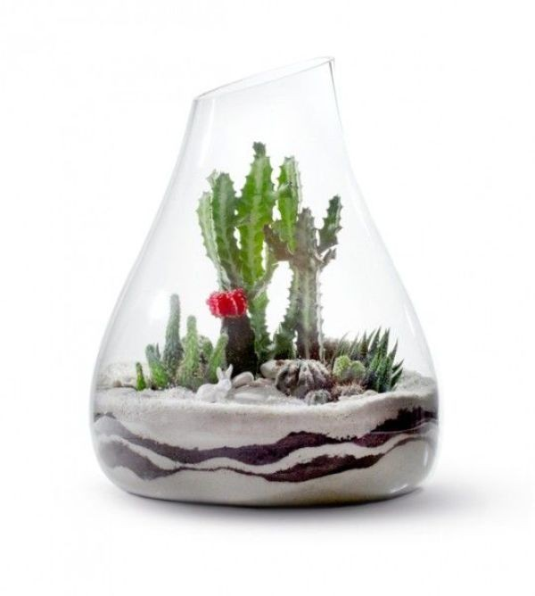 terrarium 15 Newest Home Decoration Trends You Have to Know for 2018