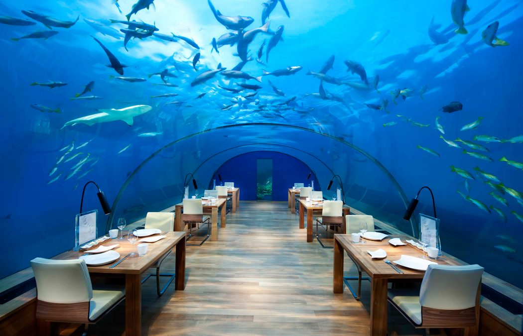 IthaaUnderseaRestaurant 10 Most Unusual Restaurants in The World 2018