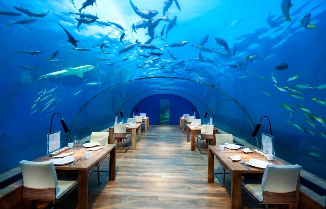 IthaaUnderseaRestaurant 10 World's Most Unusual Restaurants