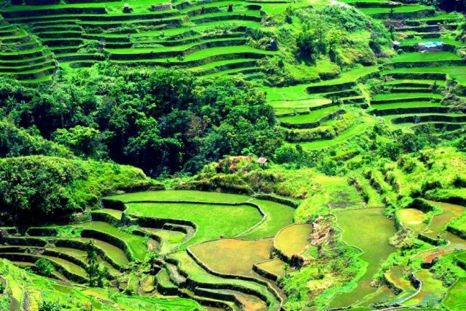 Banaue-Rice-Terraces-Ifugao-675x451 Top 10 Most Attractive Places you Should Visit in Philippines