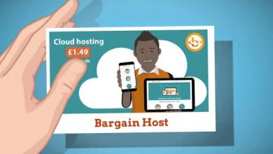 Photo of BargainHost.co.uk Hosting Review !