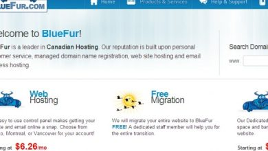 Photo of Bluefur Hosting Reviews (Ratings, Uptime, Coupon Codes, Support, More…)