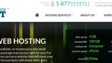 Photo of Downtownhost.com Hosting Review!