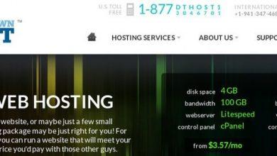Photo of Downtownhost.com Hosting Review!