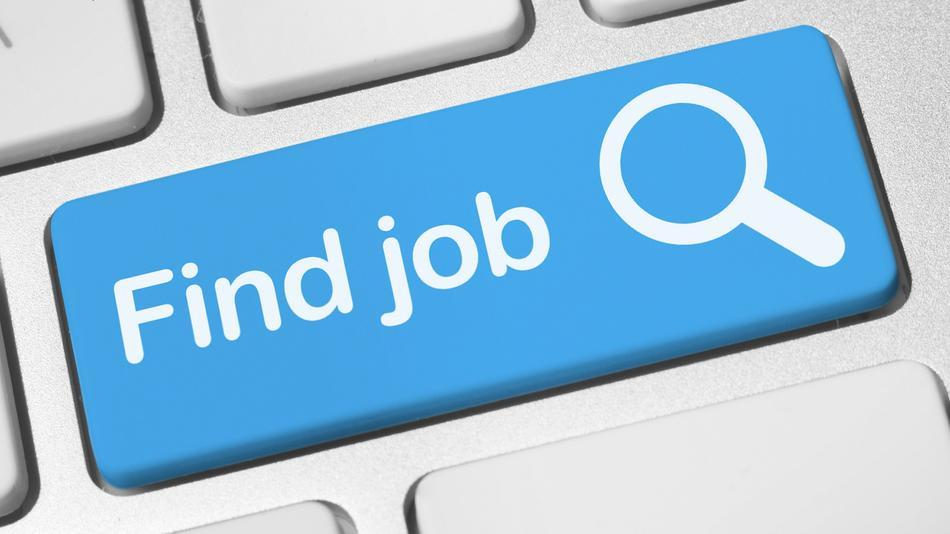 How-to-Search-For-a-Job-Online What Information Is Included in a Background Check?