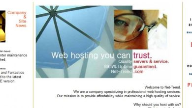 Photo of Net-Trend Web Hosting Customers Review   5 Factors Made it Leader!