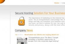 Photo of OrangeWebsite.com Reviews (Hosting Uptime, Designs, Support, Offers, Services, Disadvantages, …)