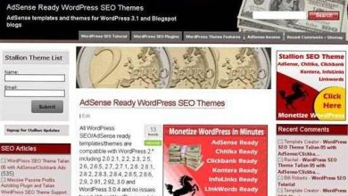 Photo of Stallion WordPress SEO Theme Review