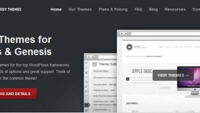 Photo of Themedy Themes Review – Features That Webmasters Hope To SEE!