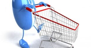 What Is the Best Web Hosting Plan for Online Store Building?