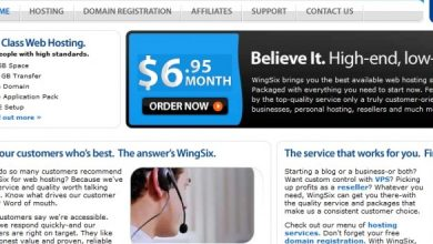 Photo of Wingsix Web Hosting Review | How Wingsix Company Changed My Business!