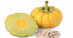 Weight Loss with the Help of Healthy Life & Garcinia Cambogia