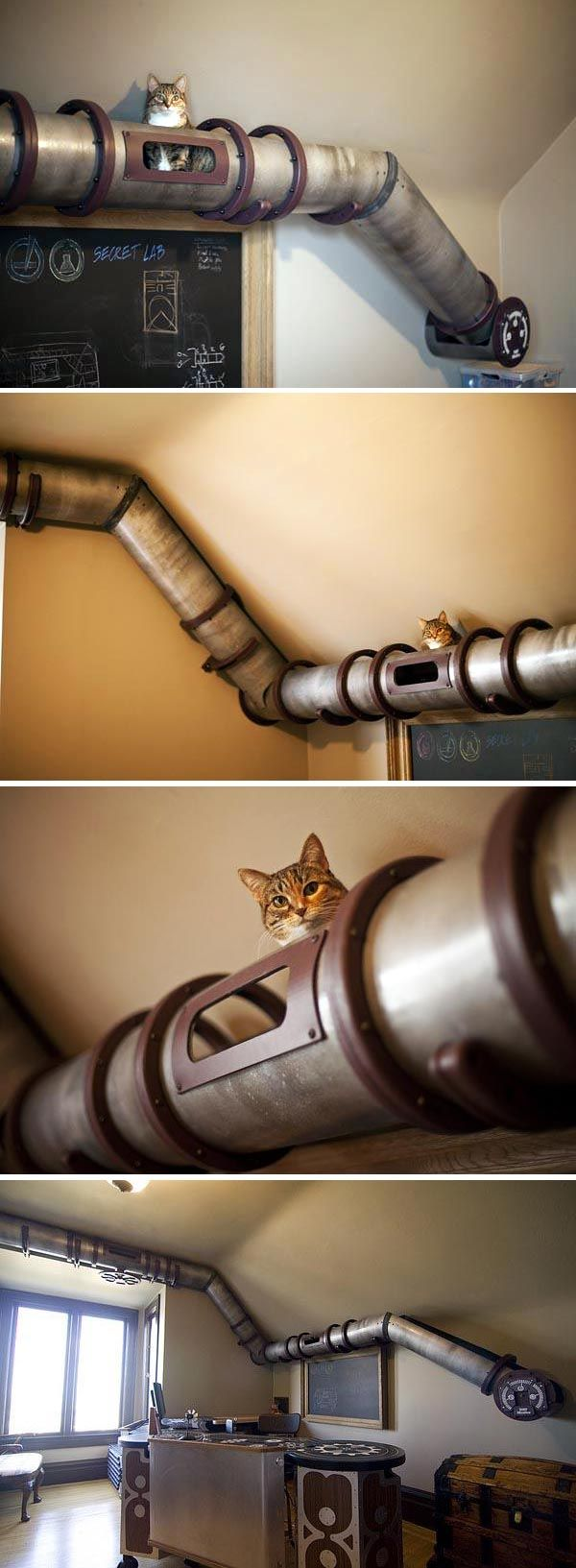 Cat-Transit-System 16 Stylish Cat Furniture Pieces for Cat Lovers