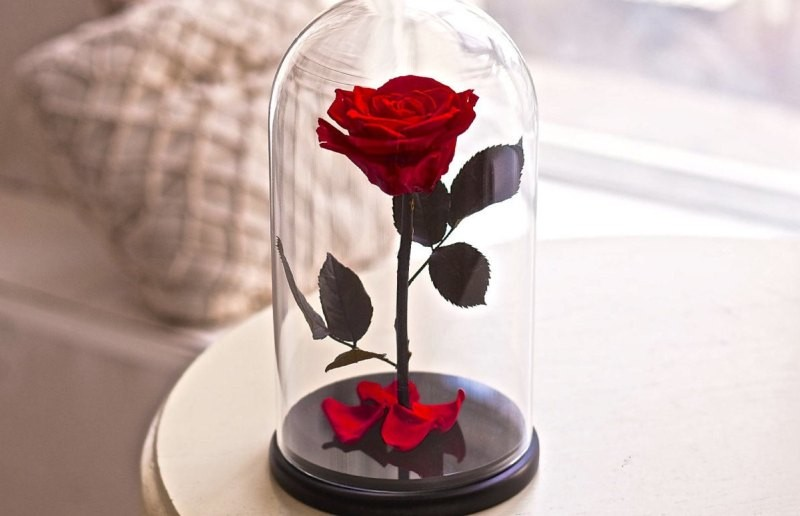 Mothers-Day-flowers-14 28+ Most Fascinating Mother's Day Gift Ideas