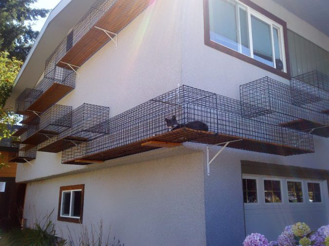 Outdoor-Catwalk-675x506 15+ Cat Furniture Pieces for Cat Lovers in 2020