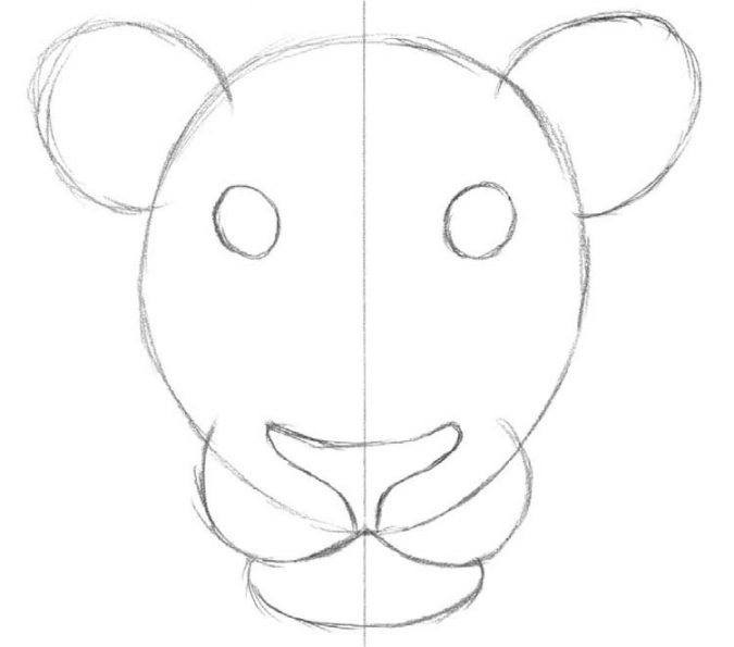 cartoon-drawing-axis-of-symettry-675x595 7 Tips to draw Stunning Cartoon Characters