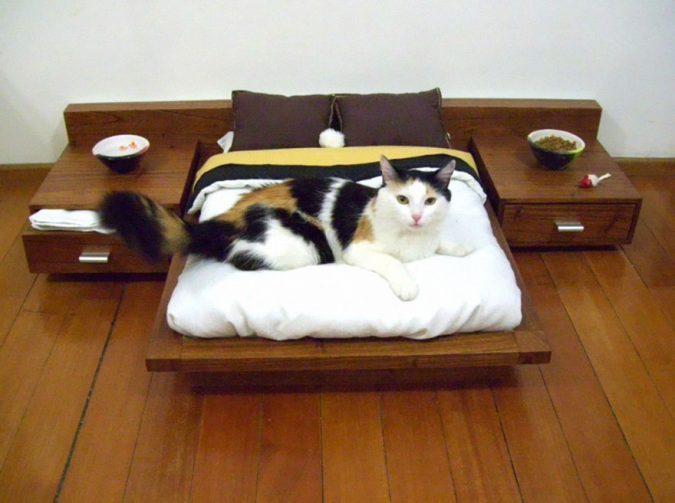 cat-furniture-mini-bedroom-675x503 15+ Cat Furniture Pieces for Cat Lovers in 2020
