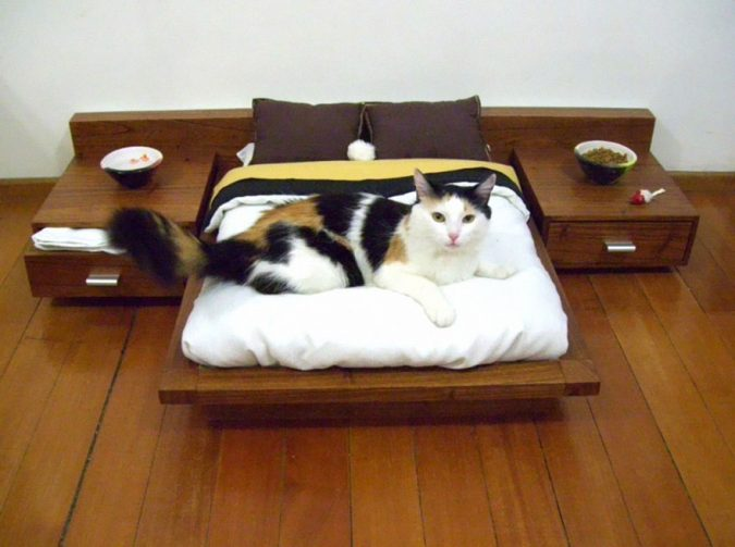 cat-furniture-mini-bedroom-675x503 16 Stylish Cat Furniture Pieces for Cat Lovers