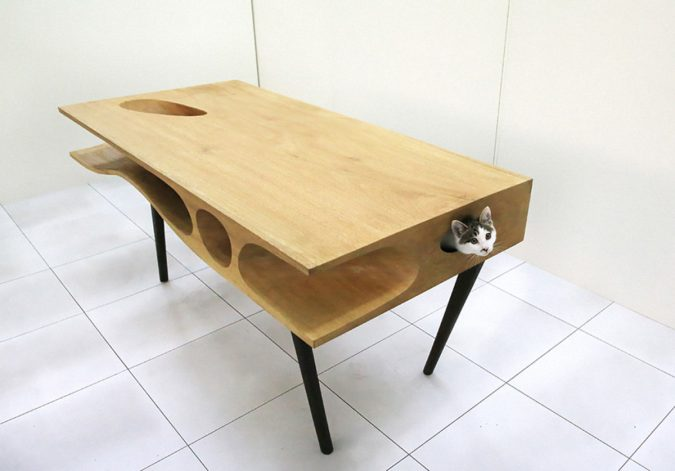 play-table-for-cat-1-675x471 15+ Cat Furniture Pieces for Cat Lovers in 2017