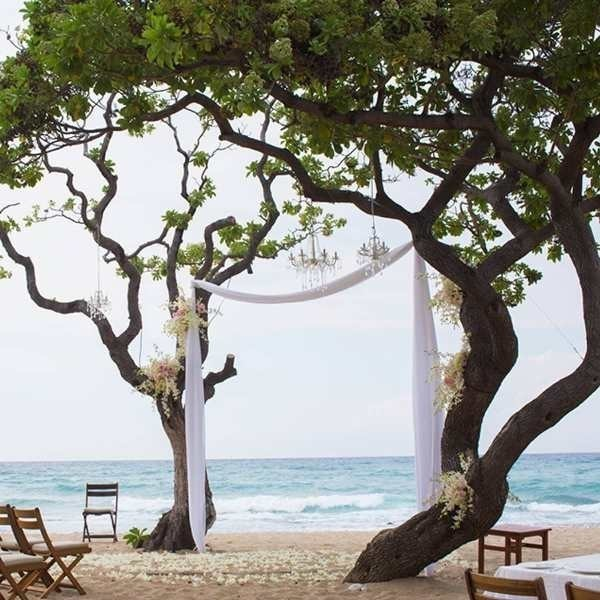 using-trees-for-decoration-13 82+ Awesome Outdoor Wedding Decoration Ideas