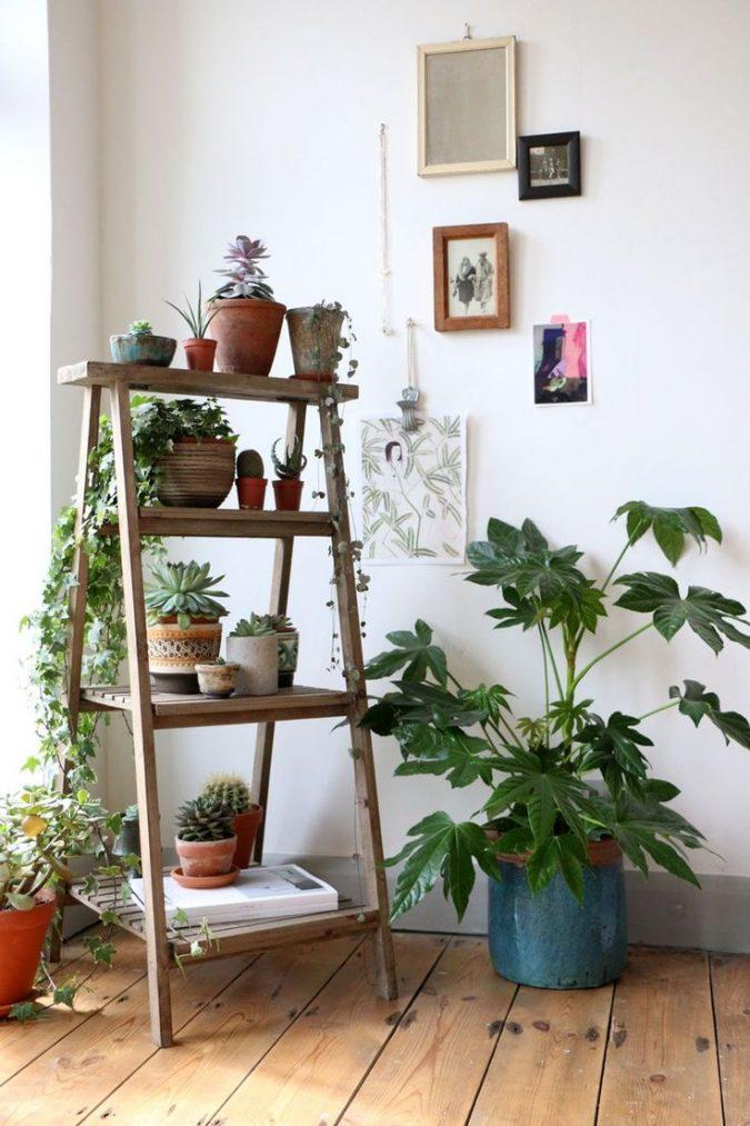 Houseplants-design-675x1013 2018 Trending: 15 Garden Designs to Watch for in 2018