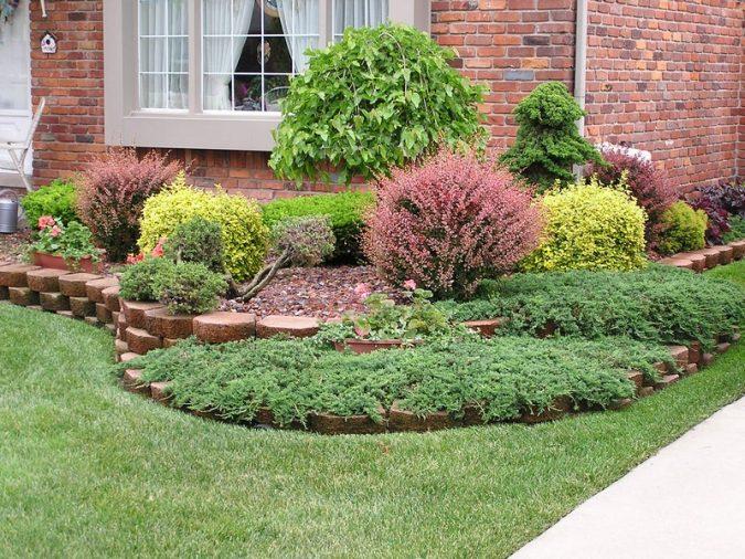 garden-design-Dwarf-Shrubs-675x506 Trending: 15 Garden Designs to Watch for in 2020