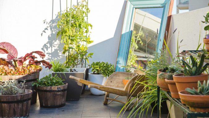 rooftop-garden-Statement-Plants-675x380 2018 Trending: 15 Garden Designs to Watch for in 2018