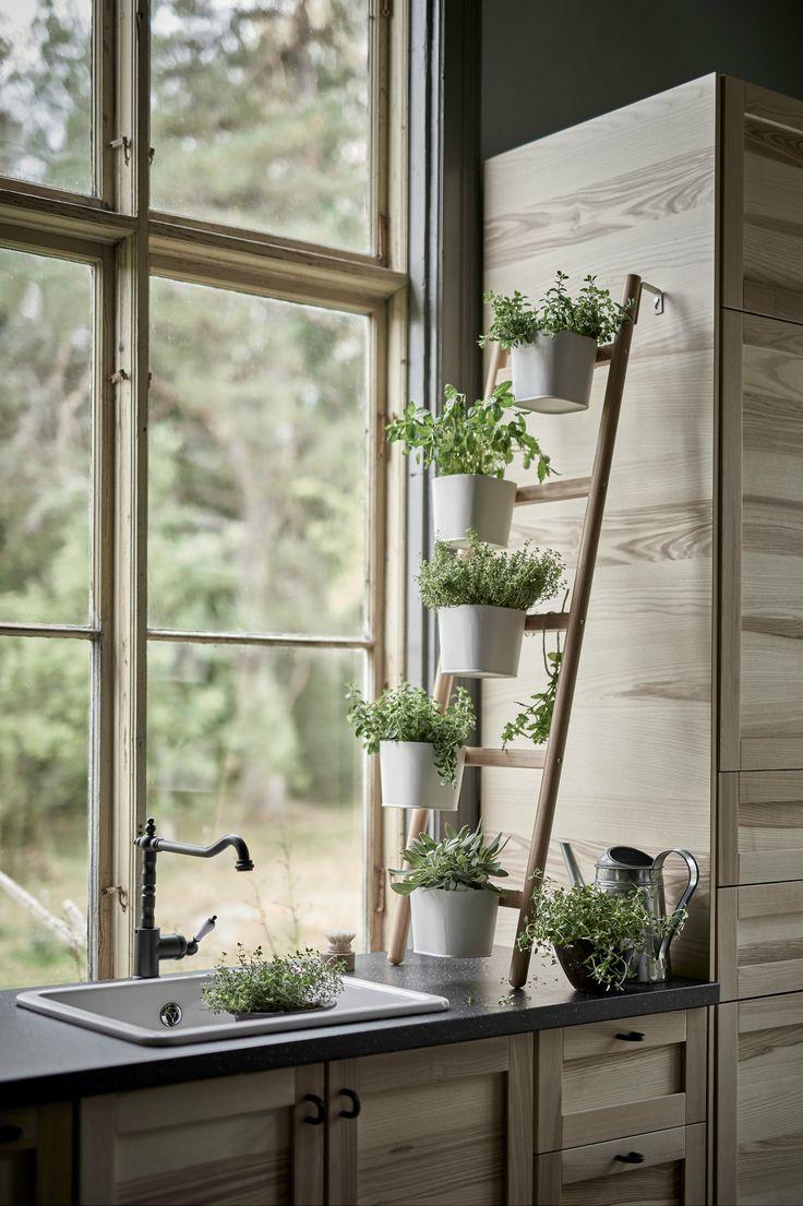 662f41b543da59c6d5a9ee76b751cc78-life-kitchen-kitchen-ideas Great Ways to Make Your Dream Green Kitchen