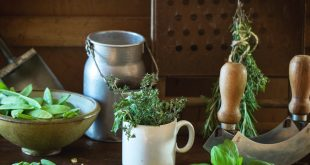 Great Ways to Make Your Dream Green Kitchen